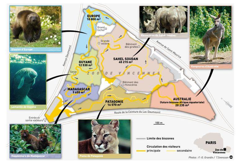 Infog-zoo-vincennes